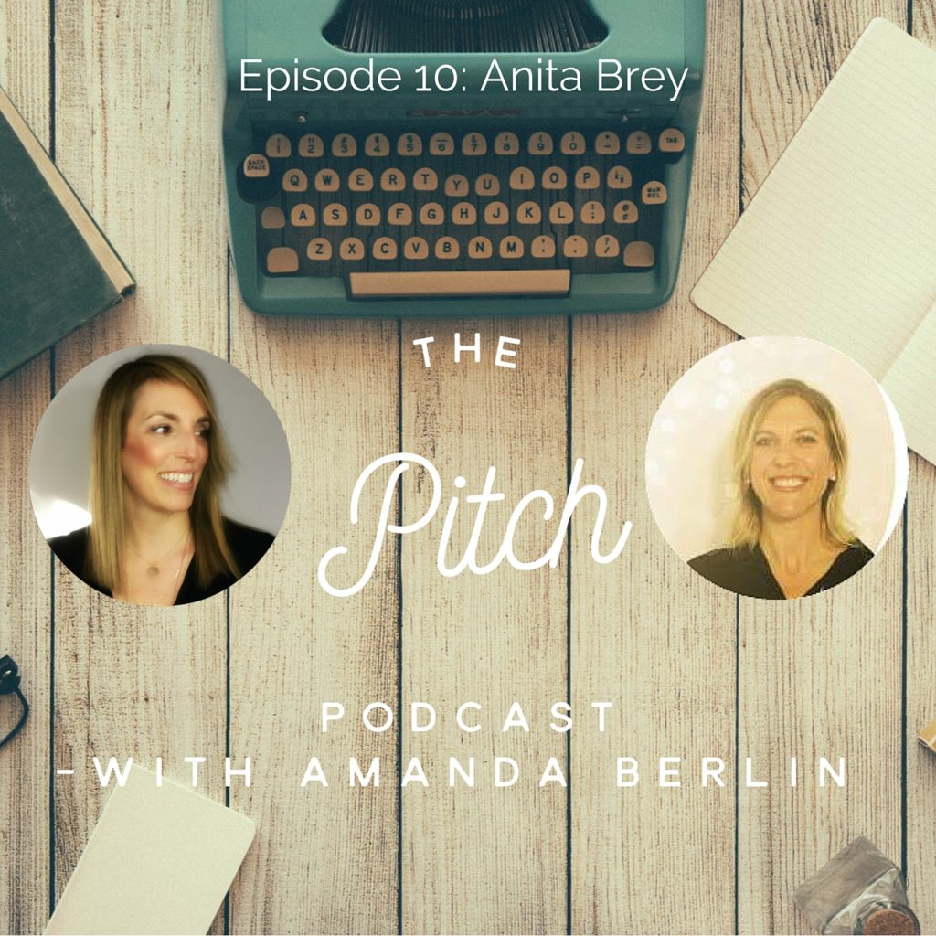 The Pitch - Anita Brey